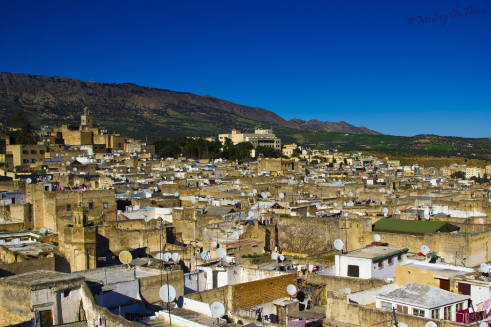 Wanderlust fuelled view over the rooftops of Fez, Morocco Copyright © by Mallory On Travel adventure, photography