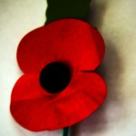 Remembrance Sunday or Armistice  Day – Heroes and Fallen Comrades