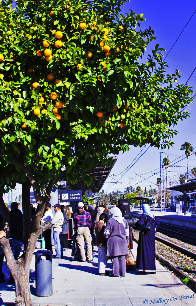 Adventures in Fes on the railway station Morocco on Mallory on Travel, adventure, adventure travel, photography