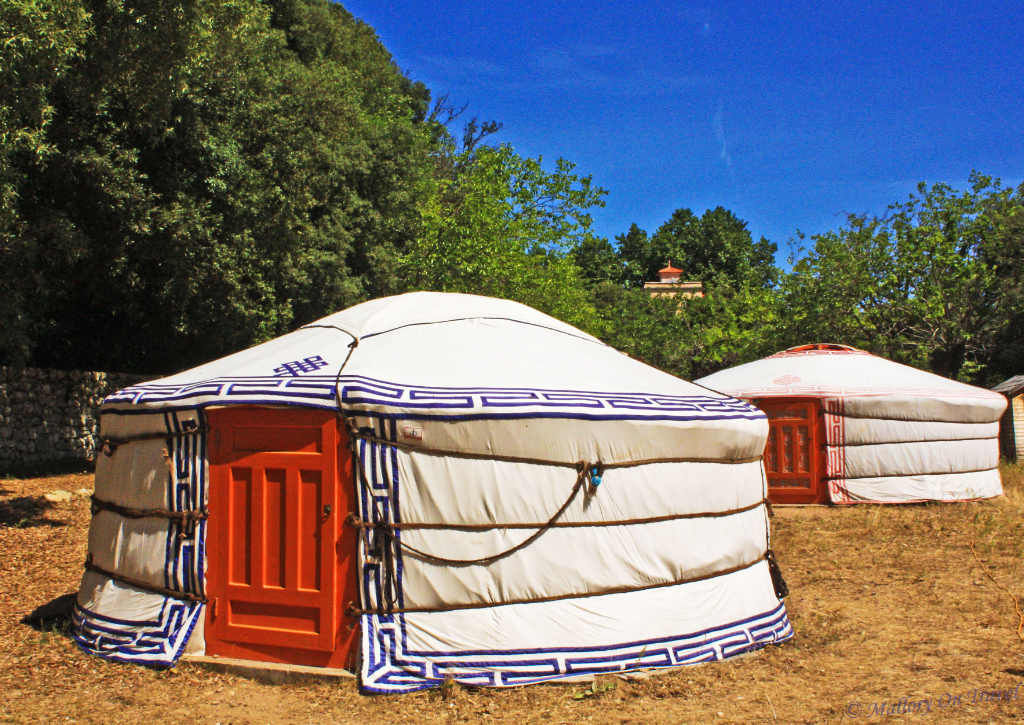 Mariani-Yurt_edited-1-1.jpg