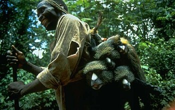 Cultural immersion; Hunting primates in Africa part of the bushmeat trade  on Mallory on Travel, adventure, adventure travel, photography