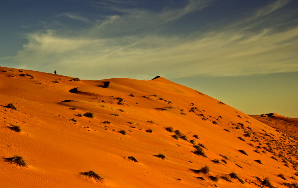 Open quarter desert, the Wahiba Sands in the Sultanate of Oman  on Mallory on Travel, adventure, adventure travel, photography