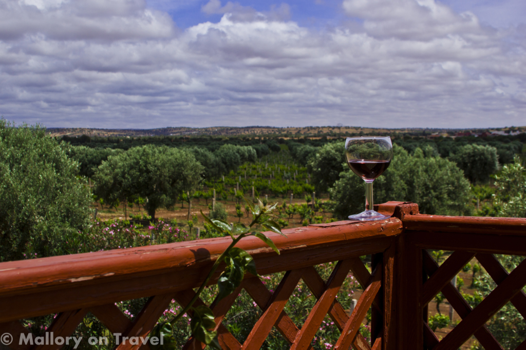 A Moroccan vineyard producing North African wine near Essaouira on Mallory on Travel adventure photography