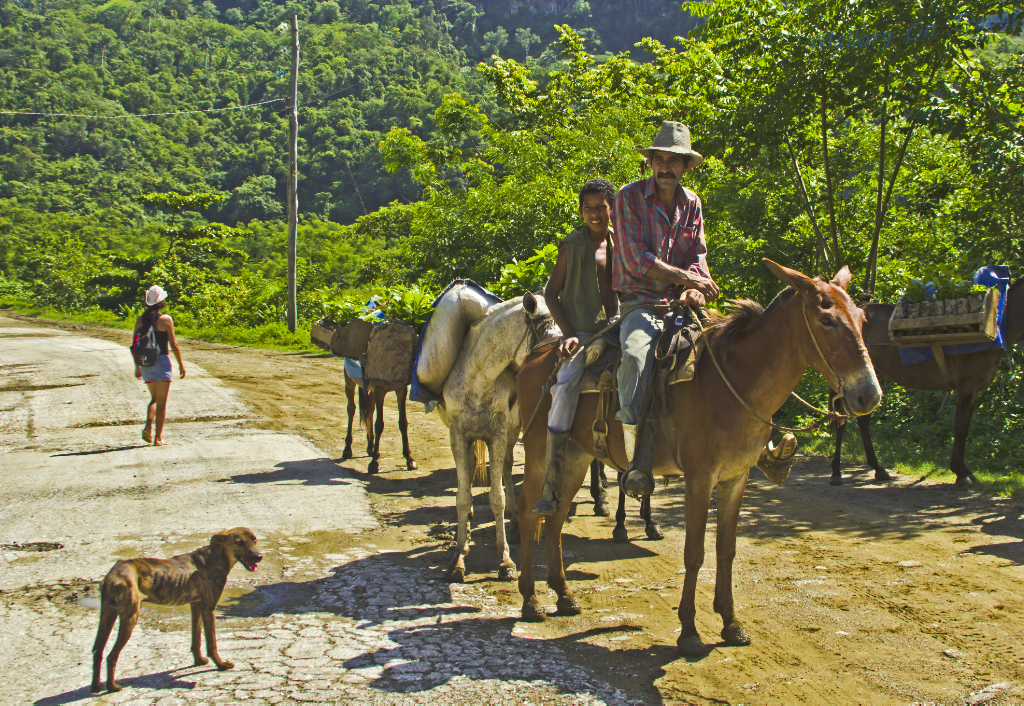 Horseriders on the road on Cuba on Mallory on Travel adventure photography