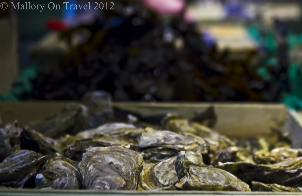 Oysters in Lyon Hall market in the Rhone-Alpes region of France on Mallory on Travel adventure photography Iain Mallory-300-59