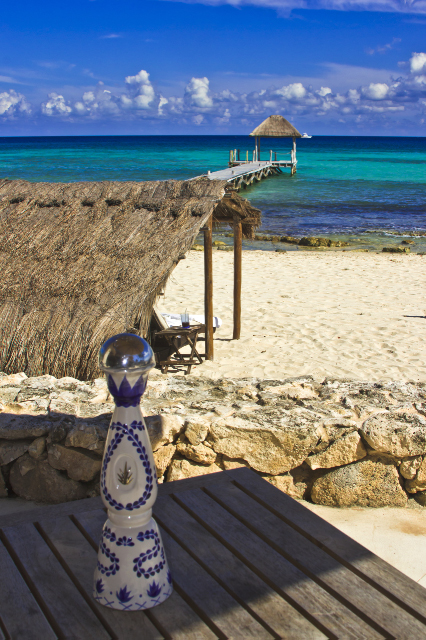 Tequila on the Playa del Carmen on the Riviera Maya in Mexico on Mallory on Travel, adventure, adventure travel, photography Iain Mallory-300-5-1