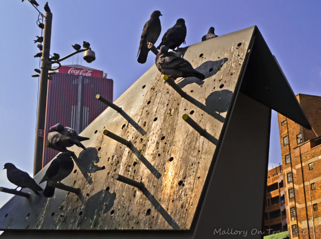 Pigeon Square n cultural precinct of Newtown, Johannesburg, South Africa on Mallory on Travel, adventure, adventure travel, photography Iain Mallory-300-23