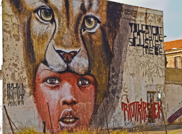 Street art in cultural precinct of Newtown, Johannesburg, South Africa on Mallory on Travel, adventure, adventure travel, photography Iain Mallory-300-26