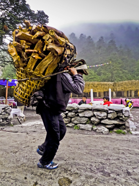 Treks to Nepal; A Sherpa transporting a heavy load around the Himalaya on Mallory on Travel, adventure, adventure travel, photography
