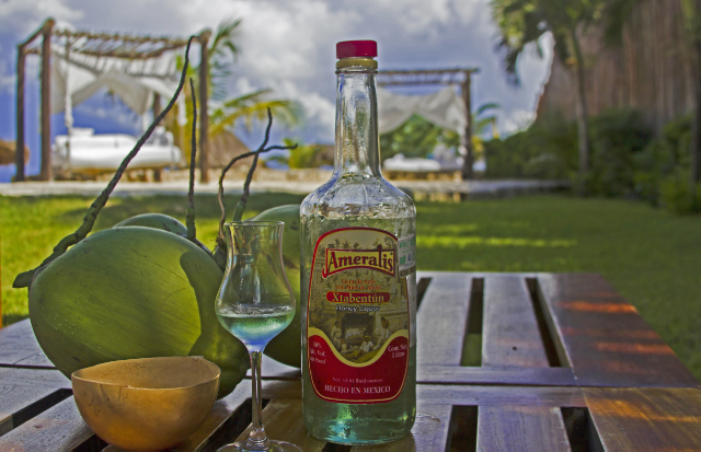 The source of the British humour, Drinks in a special place, the Viceroy resort in the Riviera Maya, Mexico adventure, adventure travel, photography on Mallory on Travel Iain Mallory-300-21