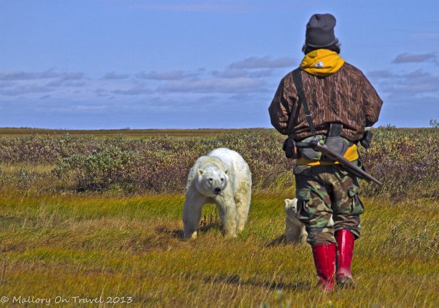 Our guide at Nanuk Polar Bear Lodge, on the edge of Hudson Bay in Manitoba, Canada on Mallory on Travel adventure, adventure travel, photography Iain Mallory-300-38_polar_bear