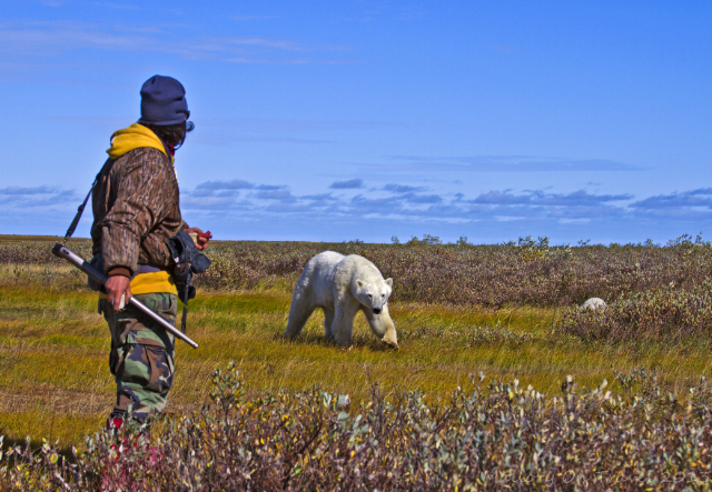Our guide at Nanuk Polar Bear Lodge, on the edge of Hudson Bay in Manitoba, Canada on Mallory on Travel adventure, adventure travel, photography Iain Mallory-300-47_polar_bear