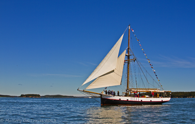 Sailing boat whale watching in St Andrews, the Bay of Fundy, New Brunswick in Canada on Mallory on Travel adventure, adventure travel, photography Iain Mallory-300-5_sailing_boat