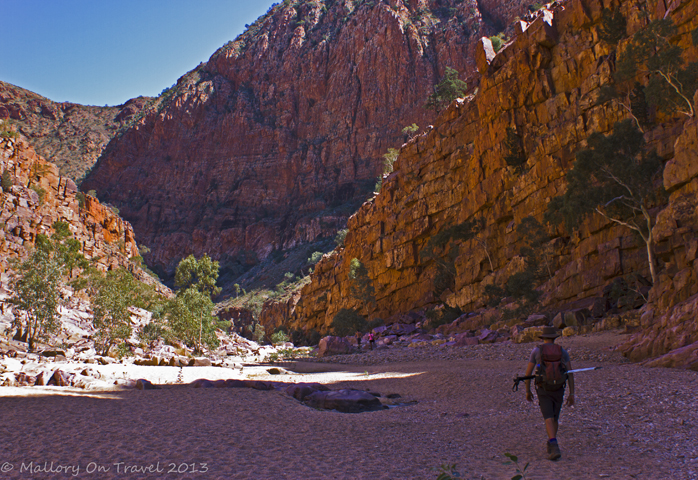 Solitary trekker on the Pound Walk of the Larapinta Trail in the west MacDonnell Ranges of the Northern Territory, Australia on Mallory on Travel adventure, adventure travel, photography Iain Mallory-300-84_ormiston_gorge