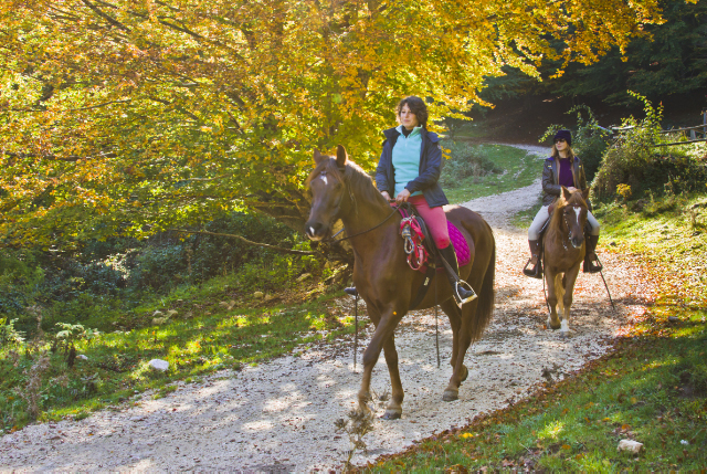 Autumn Horse riding in the Matese of Molise, Italy on Mallory on Travel adventure, adventure travel, photography Iain Mallory-300-13_autumn_horseriding