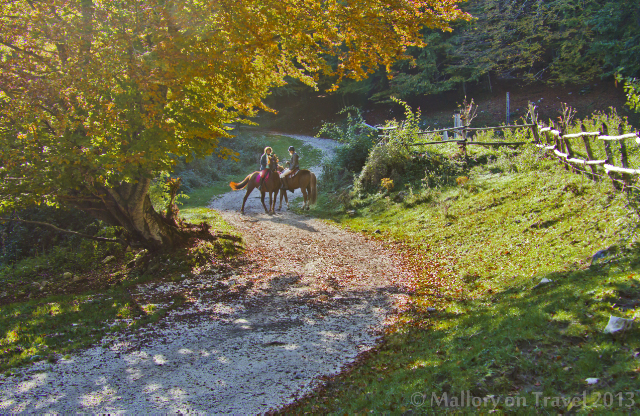 An autumn ride in the Matese, Molise of Italy  on Mallory on Travel adventure, adventure travel, photography Iain Mallory-300-133_autumn_horses
