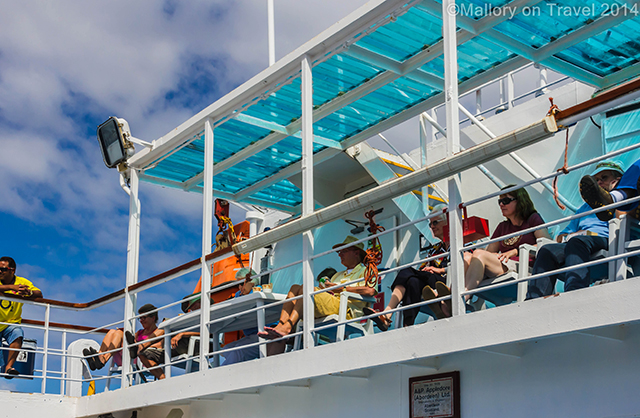 The RMS St Helena spectators in the South Atlantic Ashes cricket match  on Mallory on Travel adventure, adventure travel, photography Iain Mallory-300-6 rms_sthelena