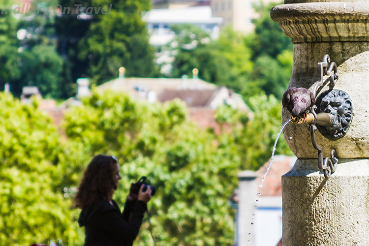 Pigeon on the fountain at the Lindenhof in the centre of Zurich, Switzerland on Mallory on Travel adventure, adventure travel, photography Iain Mallory-300-39 lindenhof_zurich