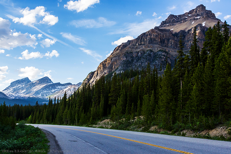 The Icefields Parkway from Banff to Jasper, lined with the Canadian Rockies in Alberta, Canada on Mallory on Travel adventure, adventure travel, photography Iain Mallory-310 icefields_parkway