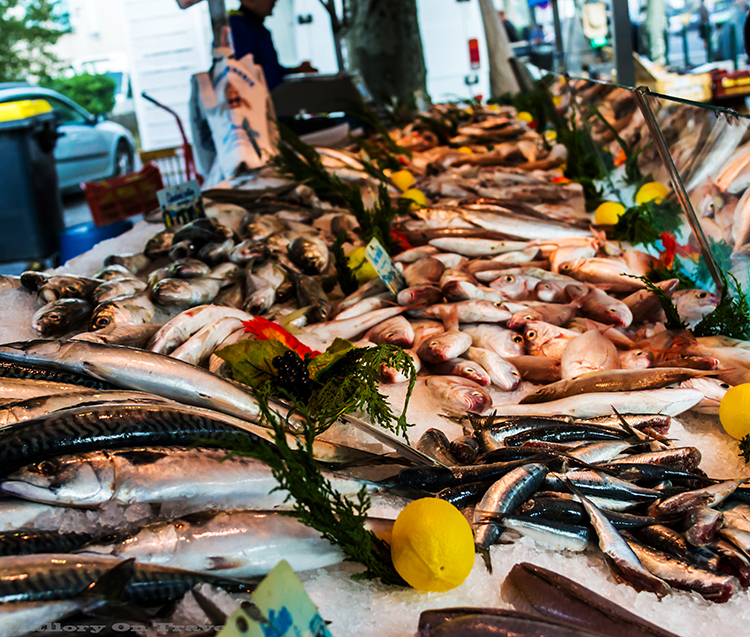 Fresh fish stall on the markets of Villefrance-de-Rouergue in Place Notre Dame in the Aveyron region of France on Mallory on Travel adventure, adventure travel, photography Iain_Mallory_Ave1403261 villefrance_de_rouergue