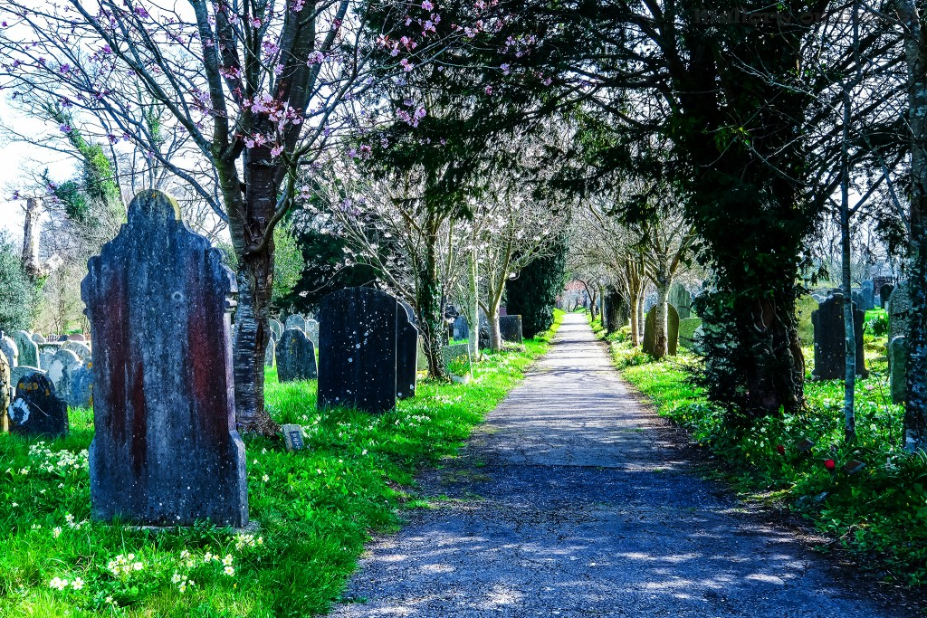 A Devon graveyard, where the lore of Sir Arthur Conan Doyle's The Hound of the Baskervilles originated on Mallory on Travel adventure travel, photography, travel Scilly Isles-22