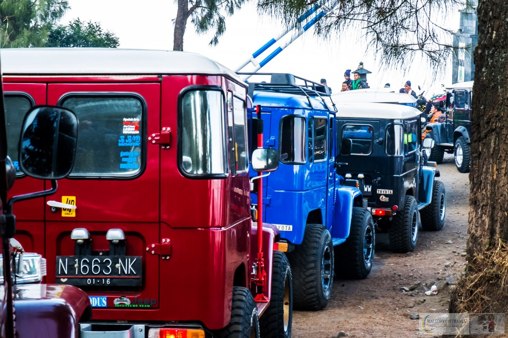 Jeeps for the Mount Bromo tour in East Java, Indonesia on Mallory on Travel adventure travel, photography, travel Iain_Mallory_Indo8217