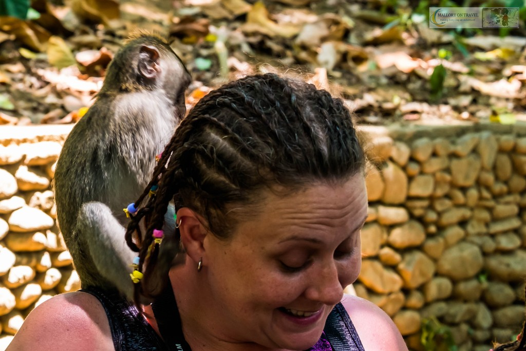 Crab eating macaque climbing on a tourist at the Sacred Monkey Forest Sanctuary in Ubud, Bali in the Republic of Indonesia on Mallory on Travel adventure travel, photography, travel Iain Mallory_monkey9339