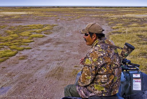 Photographing wildlife, tracking moose with a Swampy Cree guide in the tundra of Manitoba in northern Canada's Hudson Bay on Mallory on Travel adventure travel, photography, travel iain-mallory-300-87