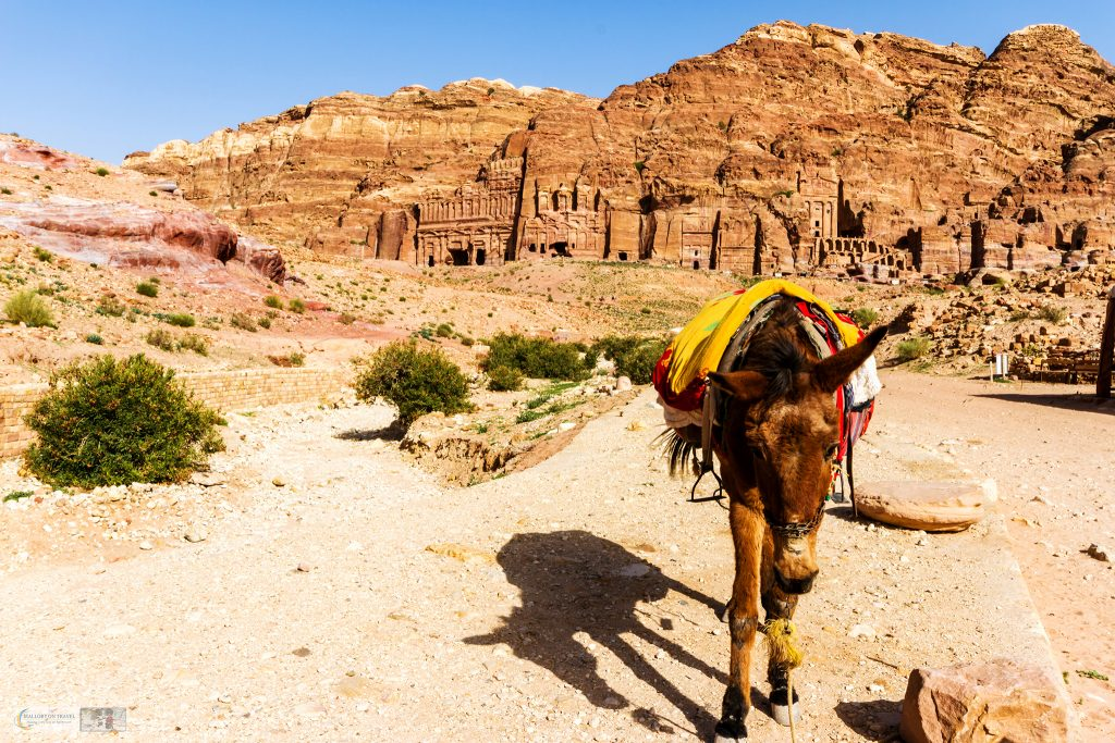 Donkey in front of the Royal Tombs of Petra in south Jordan on Mallory on Travel adventure travel, photography, travel Iain Mallory_Jordan 001-33