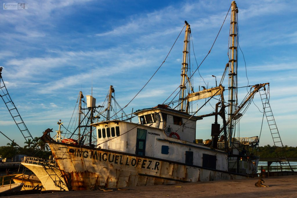 The fishing fleet of San Blas at harbour in the Pacific coast port of the Riviera Nayarit in Mexico on Mallory on Travel adventure travel, photography, travel Iain Mallory_Mex 001-62