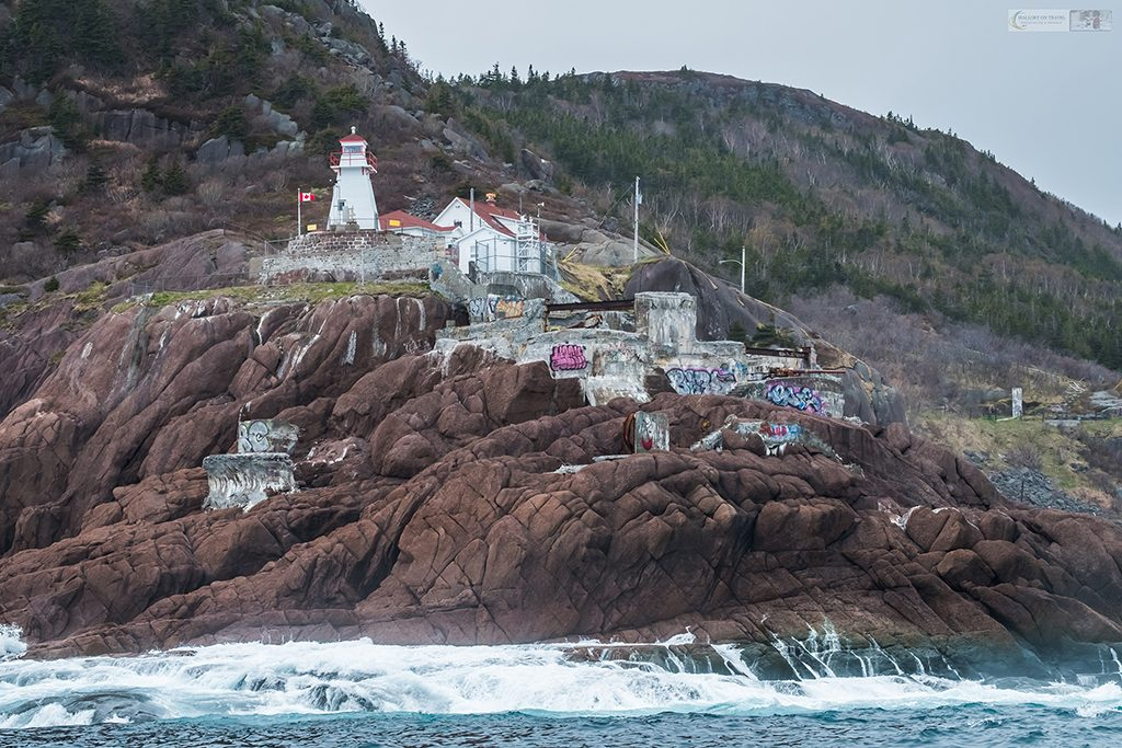 The Fort Amherst lighthouse and neighbourhood at the entrance to the harbour of St John's in the province of Newfoundland and Labrador, Canada on Mallory on Travel adventure travel, photography, travel Iain Mallory_newfoundland-1-6
