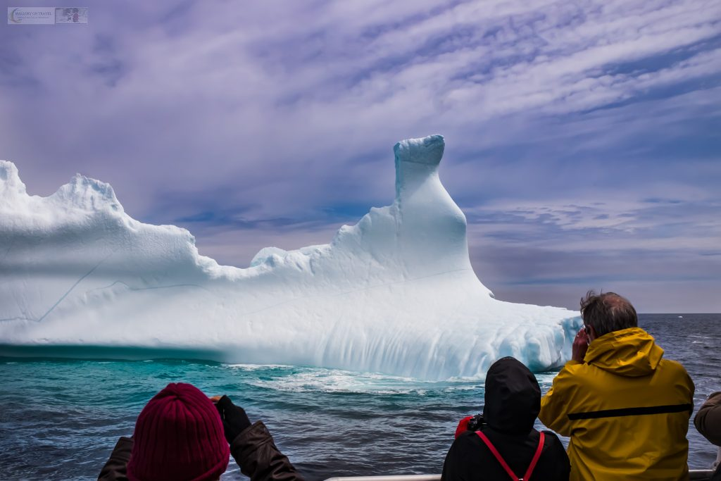 "Iceberg chasing in Iceberg Alley, off Petty Harbour on the ""Iceberg Quest"" out of St John's in Newfoundland and Labrador, Canada on Mallory on Travel adventure travel, photography, travel Iain Mallory_newfoundland-1-49"
