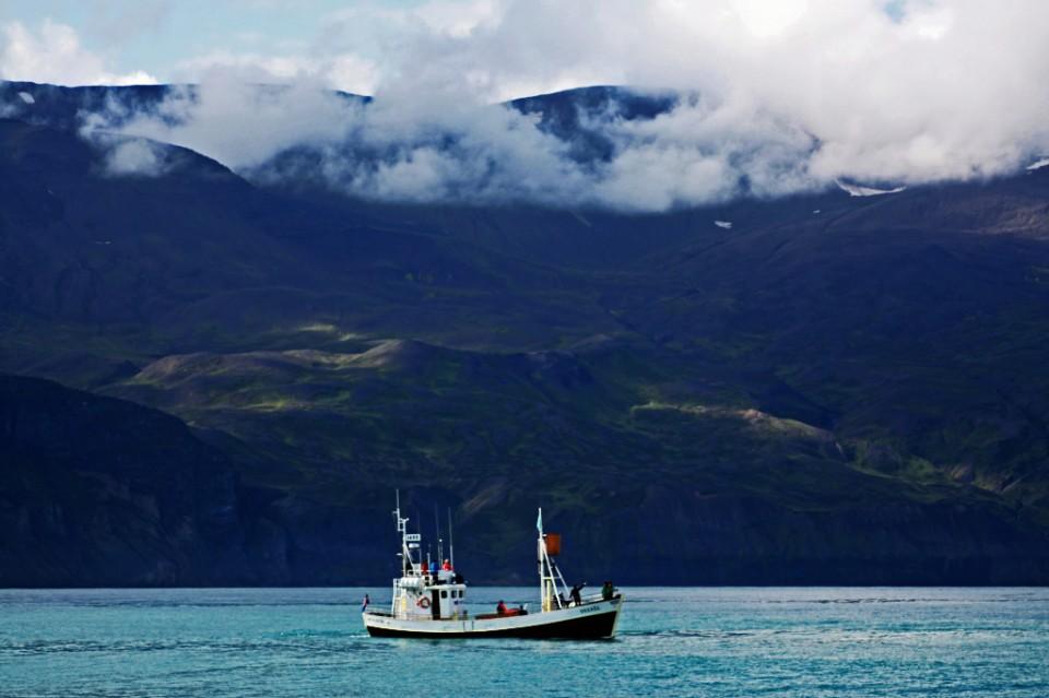 Whale watching Skjalfandi Bay, Husavik, Iceland on Mallory on Travel, adventure, photography