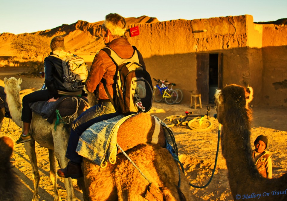Camel ride in the Morrocan desert  on Mallory on Travel, adventure, photography