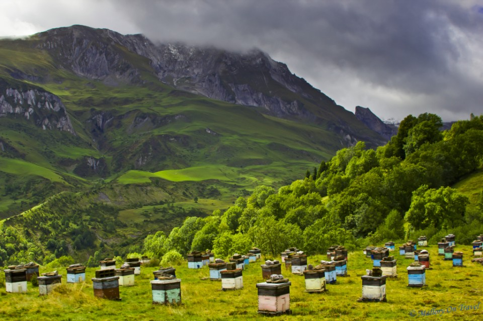 Bee transhumance and agritourism in Val d'Azun near the village of Arrens-Marsous in the French Pyrénées on Mallory on Travel, adventure, adventure travel, photography