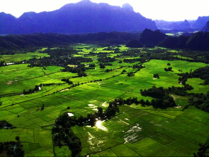 Rice fields in Laos on Mallory on Travel, adventure, adventure travel, photography