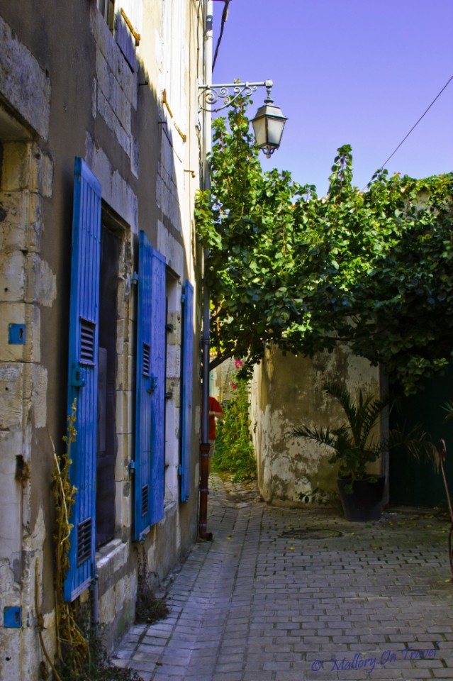 Pretty floral displays in the streets of the capital of Île de Ré St. Martin de Ré, France on Mallory on Travel, adventure, adventure travel, photography