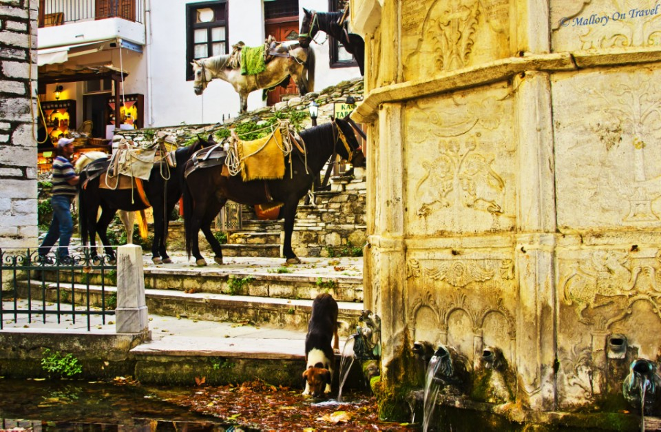 Mules in Makrinitsa, the Pelion, Greece on Mallory on Travel, adventure, adventure travel, photography