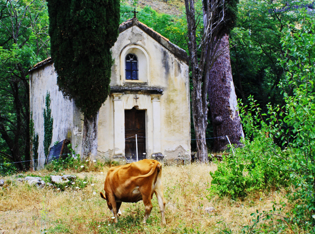 A rural scene near lovely Corte on the French island of Corsica on Mallory on Travel adventure, photography