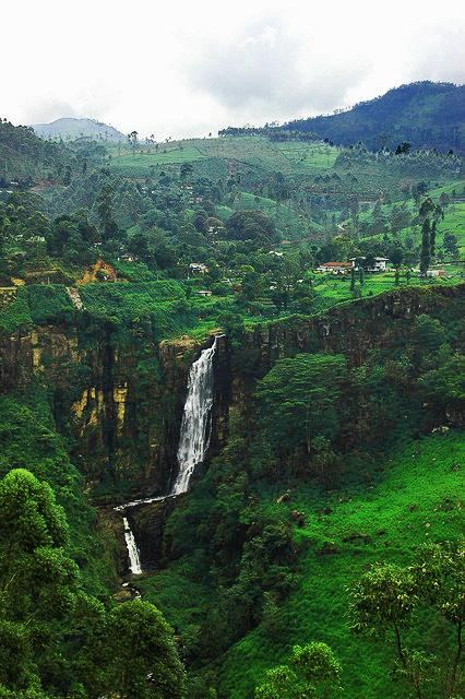 Tea plantation with waterfall in Elkaduwa region Sri Lanka on Mallory on Travel adventure, photography