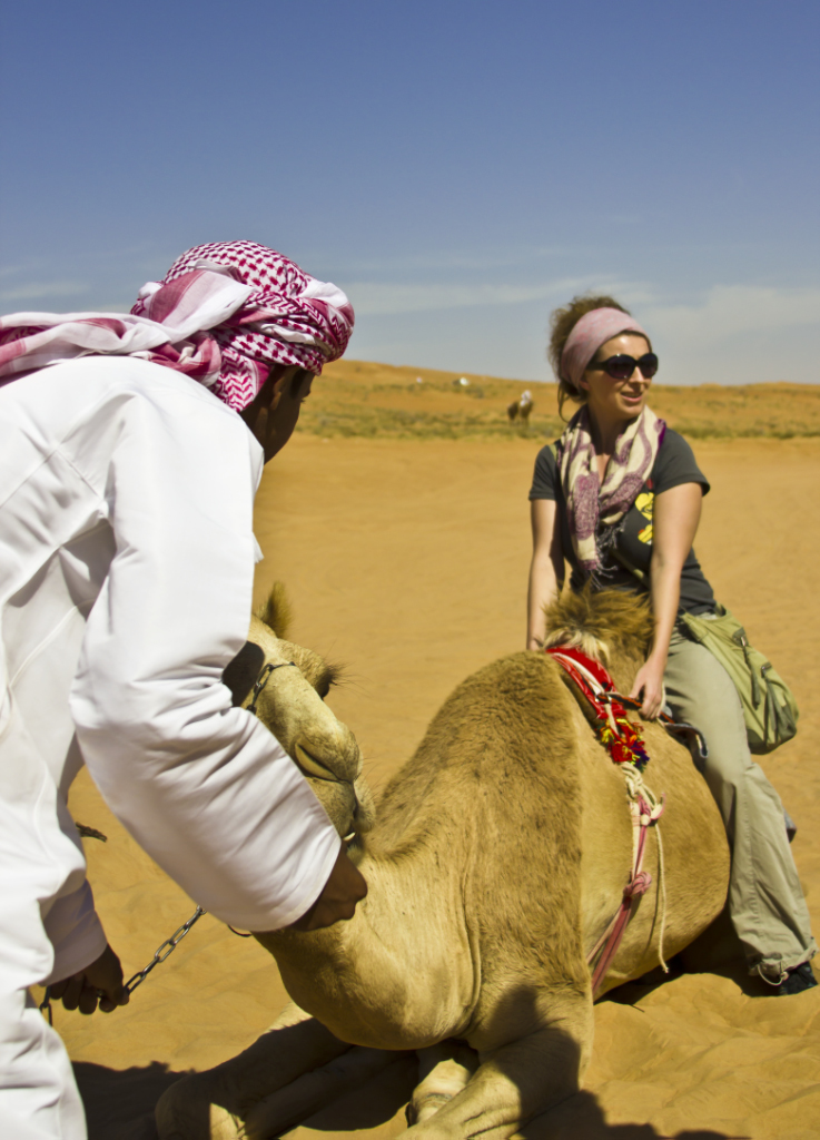 Camels ready to ride in Wahiba Sands, Oman on Mallory on Travel adventure, photography