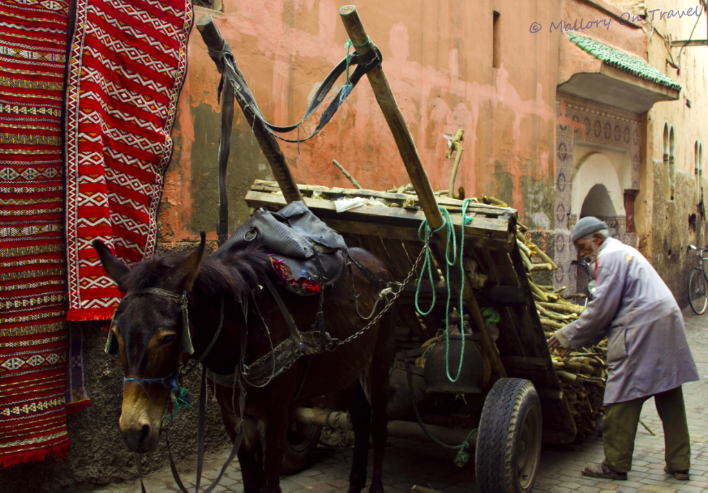 Loading up the donkey cart in Marrakech medina, Morocco on Mallory on Travel adventure, photography