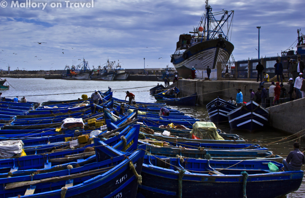 The fishing fleet of the 'Blue City' Essaouria in Morocco on Mallory on Travel adventure photography
