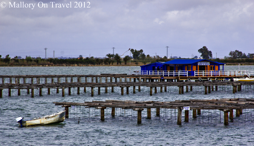 Alfacs Bay oyster and mussel farming in the Delta L'Ebre, Catalonia, Spain on Mallory on Travel adventure photography