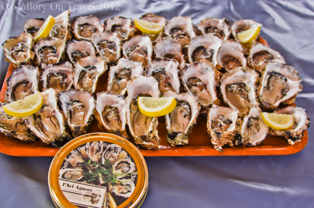 Oysters fro sale at Alfacs Bay in the Delta L'Ebre, Catalonia, Spain on Mallory on Travel adventure photography