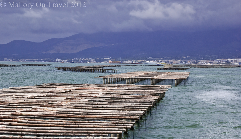 Alfacs Bay oyster farming trellises Delta L'Ebre in Catalonia, Spain on Mallory on Travel adventure photography