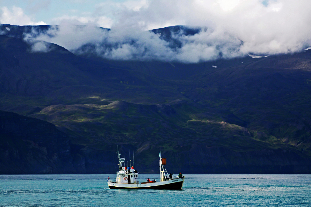 Whale watching boat in Husavik in northern Iceland on Mallory on Travel adventure photography