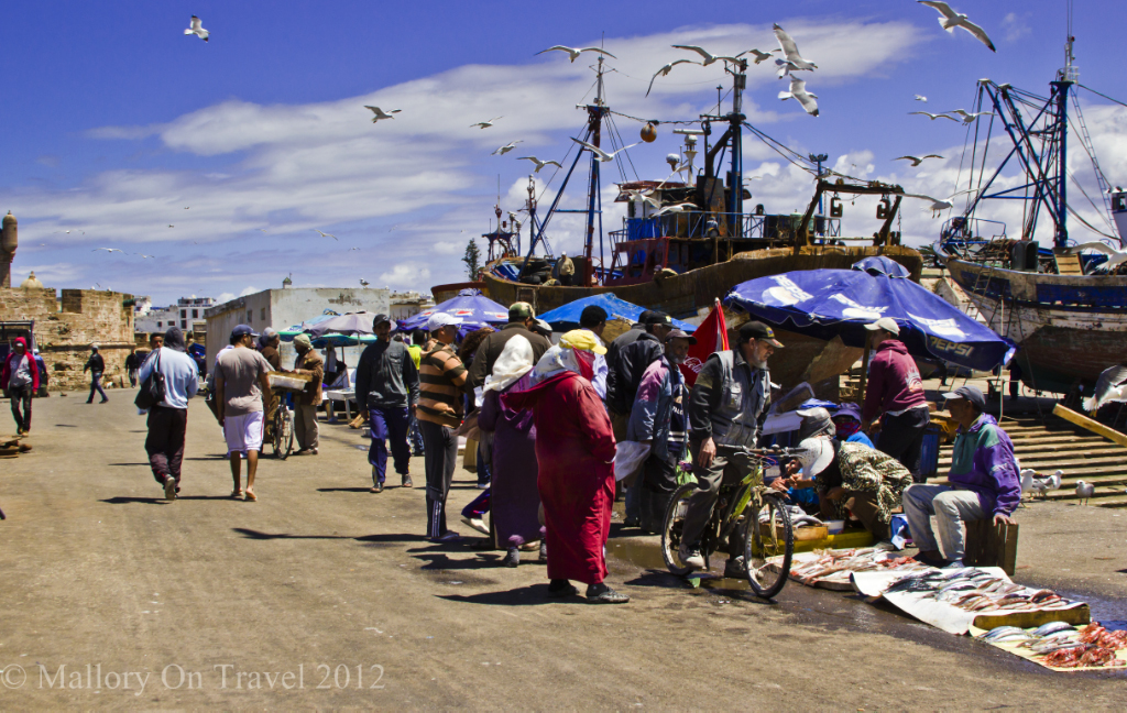 Essaouira dockside fish market in Morocco on the Atlantic coast of North Africa on Mallory on Travel adventure photography