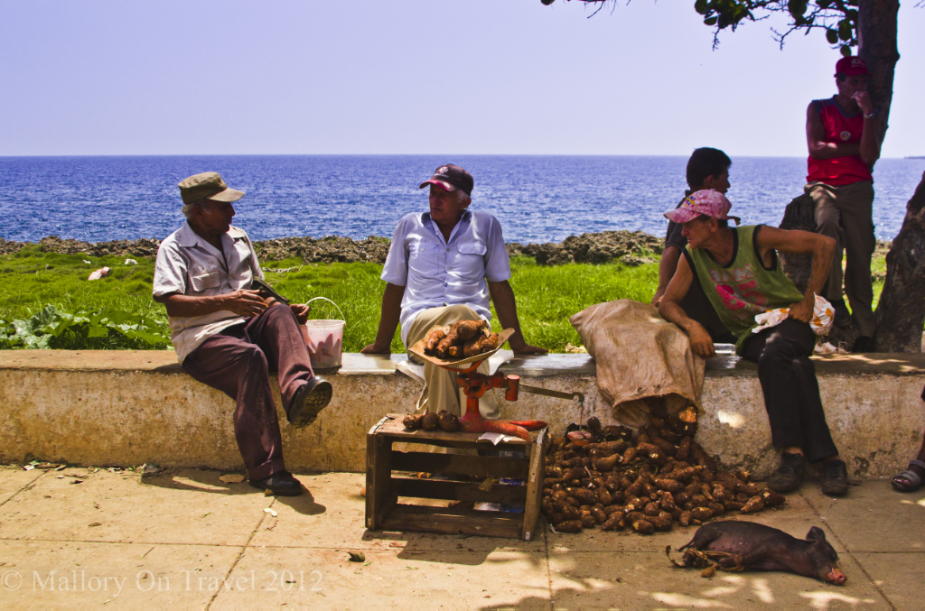 The weekend market in Baracoa selling pigs, sugar beet and more on Mallory on Trael adventure photography