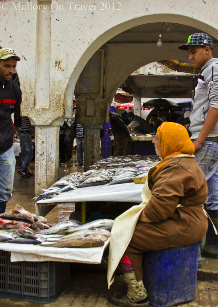 The improvised stalls of the fish market in Essaouira on the Atlantic coast of Morocco in North Africa